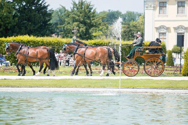 Ludwigsburger Pferdemarkt
