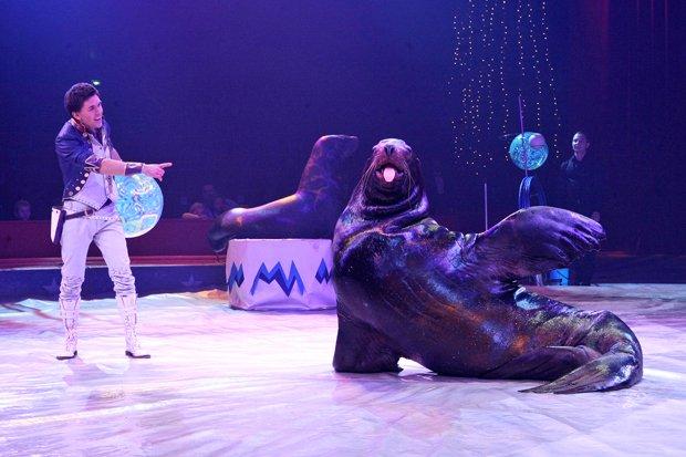 Weltweihnachtszirkus 2016