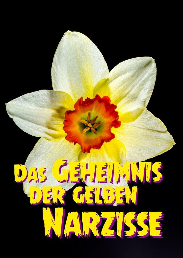 Bild -  Das Geheimnis der gelben Narzisse.jpeg