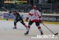 16012015_Moritz_Falken_HN_0053.jpg