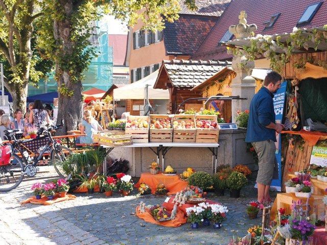 Langenburger Herbsttage