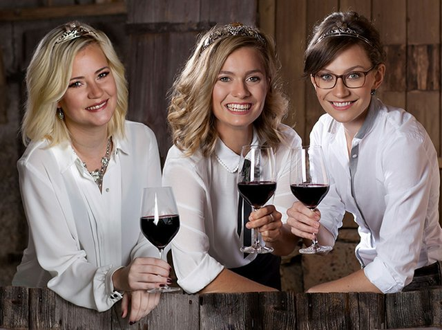 Weinhoheiten Stromberg-Zabergäu