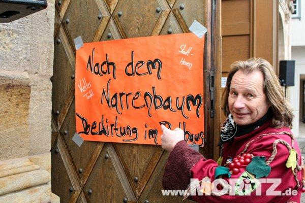 narrenbaum 20118.JPG