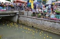 Stadtfest Sinsheim