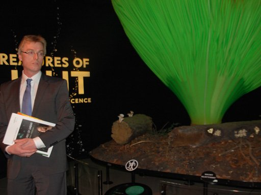 Dr. Christian Sichau, Ausstellungsleiter