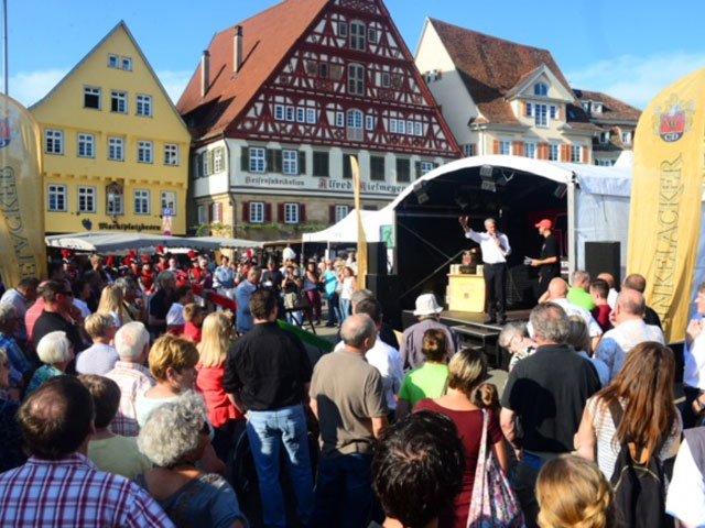 Dunkelacker Zwiebelfest Esslingen Kulisse