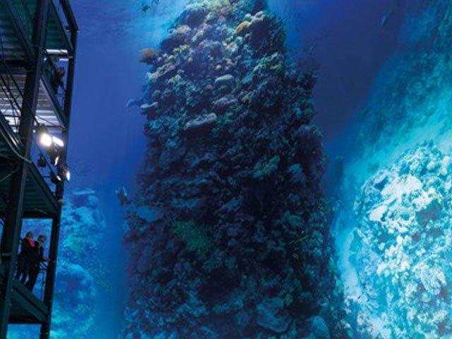 Gasometer Pforzheim Great Barrier Reef