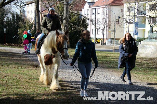 Tradition in Heilbronn - der 250. Pferdemarkt. (26 von 35).jpg