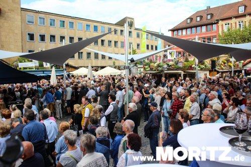 Heilbronner Weindorf Eröffnung-16.jpg