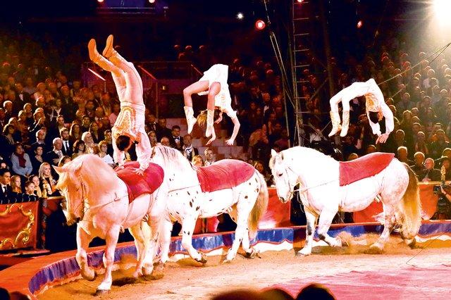 Zirkus-HN-3.png