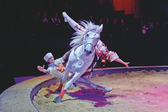 STORY_Circus1.jpg