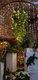 Weihnachtsmarkt Öhringen_151219-42.jpg