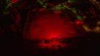 Kopie von Night of Light - Autokino Pfullingen_web.jpg