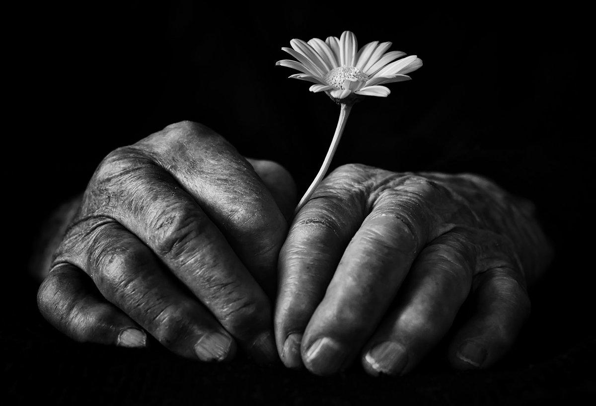Help! - Wir helfen! e.V. Fotowettbewerb »Helfende Hände ...