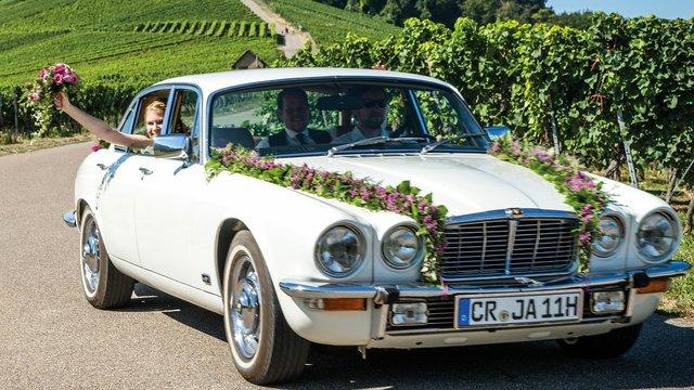 Jaguar-Hochzeit-Weinberge.jpg