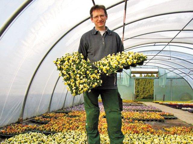 Widmann Blumen-Gärtnerei