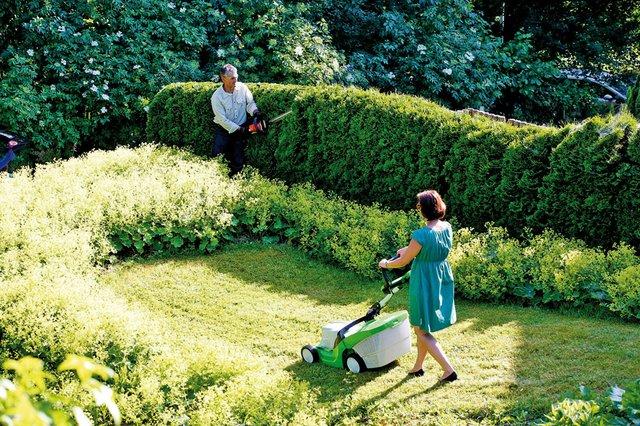 Natürlicher Sichtschutz für den Garten