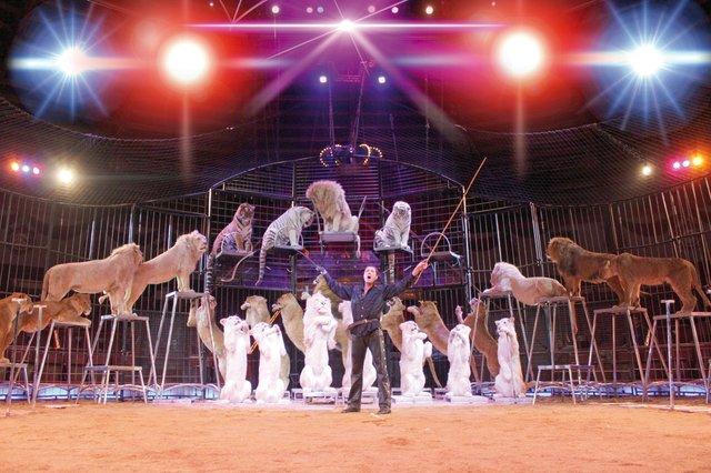 Circus Krone kommt nach Heilbronn