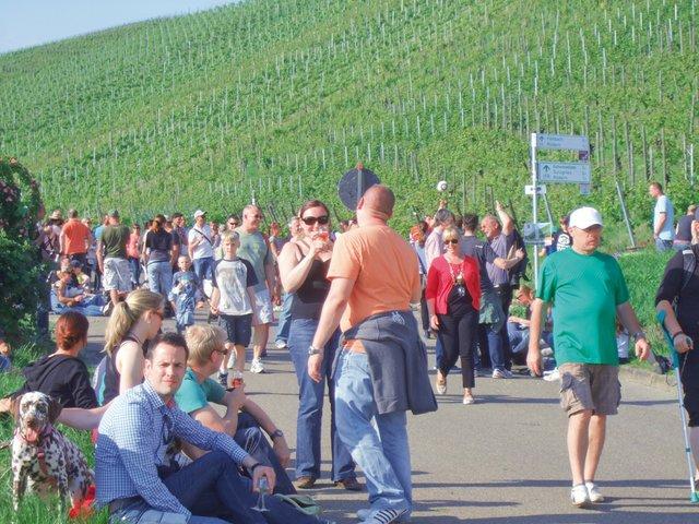 32. Weinwandertag in Esslingen