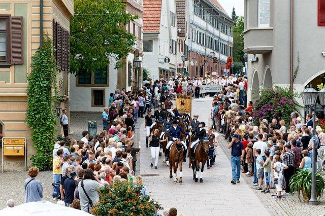 Bietigheimer Pferdemarkt